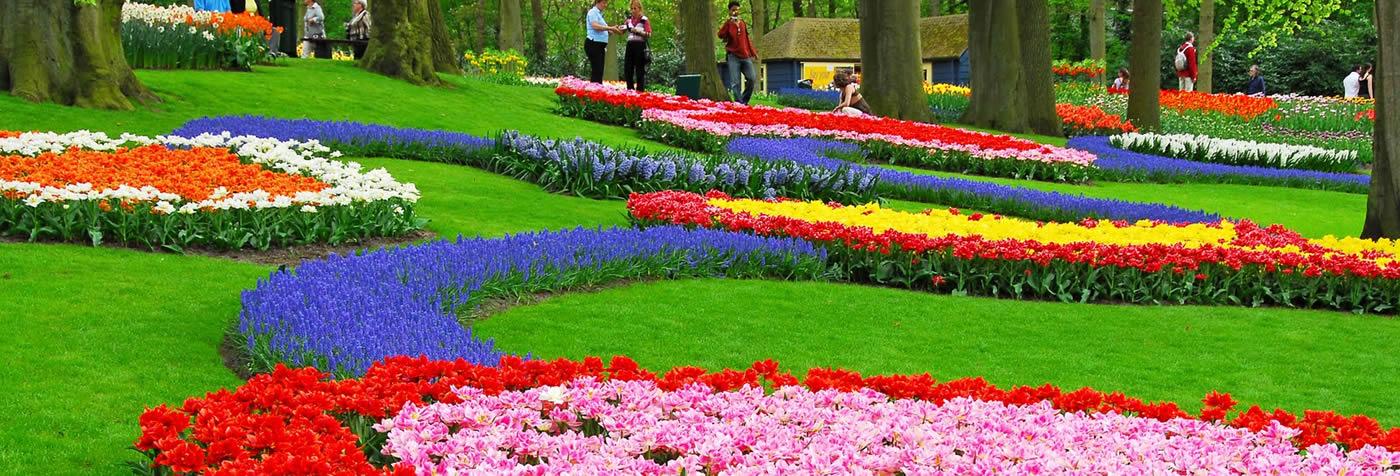 marriage-propsoal-idea-flower-garden